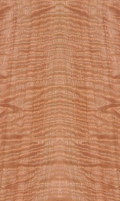 Figured Eucalyptus Veneer
