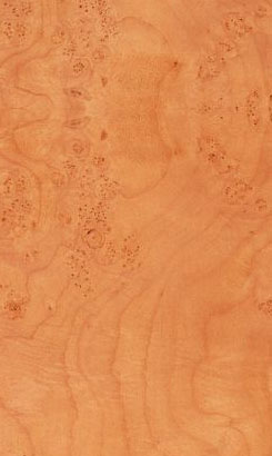 Maple Burl Veneer