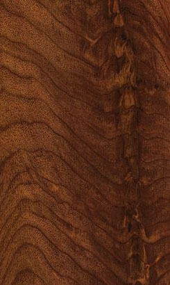 Walnut Crotch Veneer